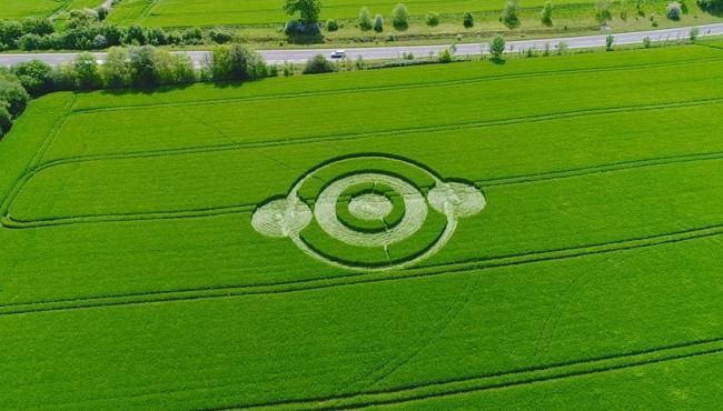 Polícia emite alerta após o surgimento de agroglifos na Inglaterra