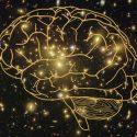 Seria a consciência uma qualidade fundamental do universo? 45