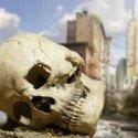 A civilização humana irá acabar em 2050, diz relatório 12