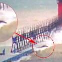 Criatura gigante é filmada no lago Michigan durante uma tempestade 1