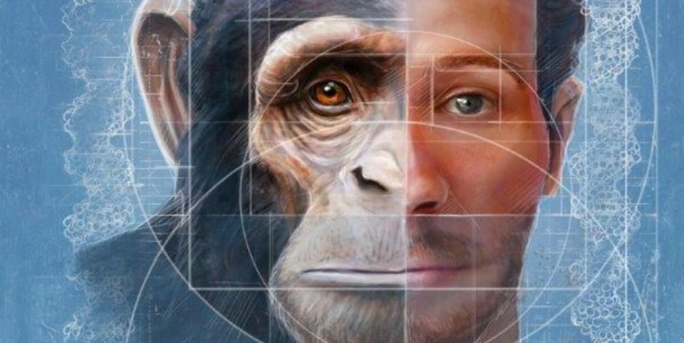 Cientistas espanhóis criam híbrido macaco-humano na China