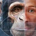 Cientistas espanhóis criam híbrido macaco-humano na China 1