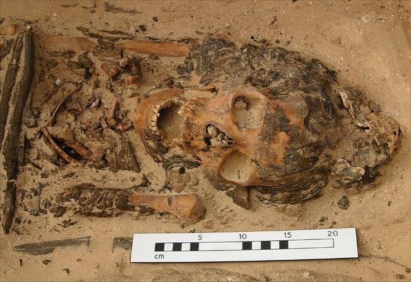 Cones para cabeça em túmulos egípcios antigos encerram debate arqueológico