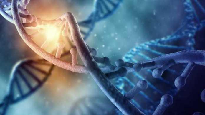 Iniciativa Genômica SETI identifica sinal alienígena potencial no DNA humano