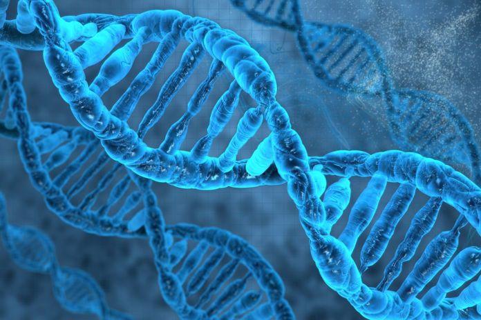 As propriedades não-físicas do DNA humano