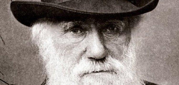 Olhando para o 'mistério abominável' de Darwin