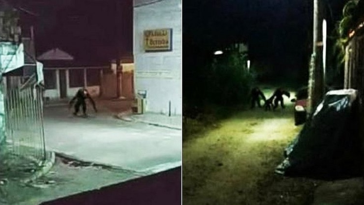 """Boato de """"criaturas estranhas"""" assusta moradores da Ilha de Itaparica - Brasil"""