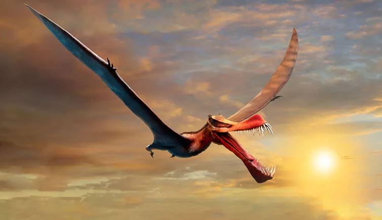 É descoberto fóssil de dinossauro suspeitosamente parecido com dragão