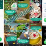 Stories en todos lados: ahora es el turno de WhatsApp