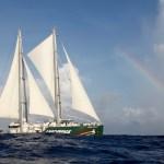 Rainbow Warrior III, el emblemático barco de Greenpeace, abierto al público en Buenos Aires