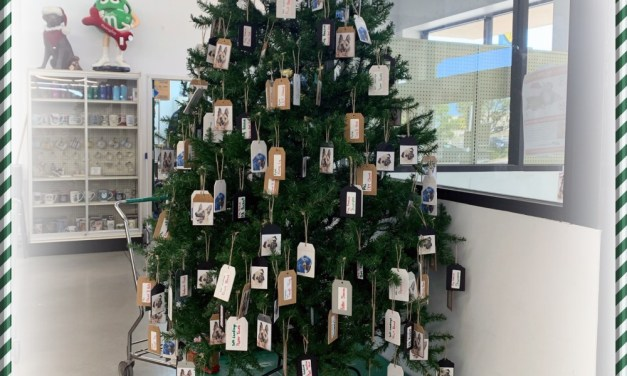 Owasso Police and Fire K9's to Benefit from Southern Agriculture Animal Angel Tree