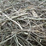 Owasso Yard Waste Collection Begins April 12th