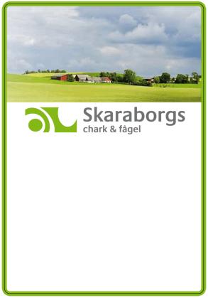 Skaraborg_1