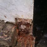 Rotten wood for gate hinge