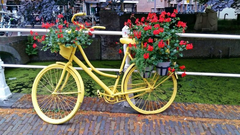 things to do in den haag for free
