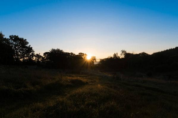 Paelo Landscape