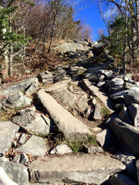 Rocks. Have I mentioned that we climbed over a lot of rocks? And that I do not want to see rocks again for a long time?