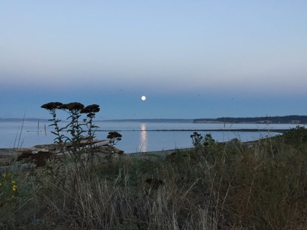 Moonrise over the inlet