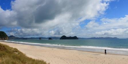Coromandel, Haie: Der tolle Strand von Hahei nach dem Sturm