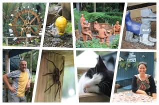 Coromandel: Impressionen vom Waterwork Park