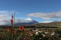 Blick auf den Vulkan Cotopaxi von der Eco-Lodge Secret Garden