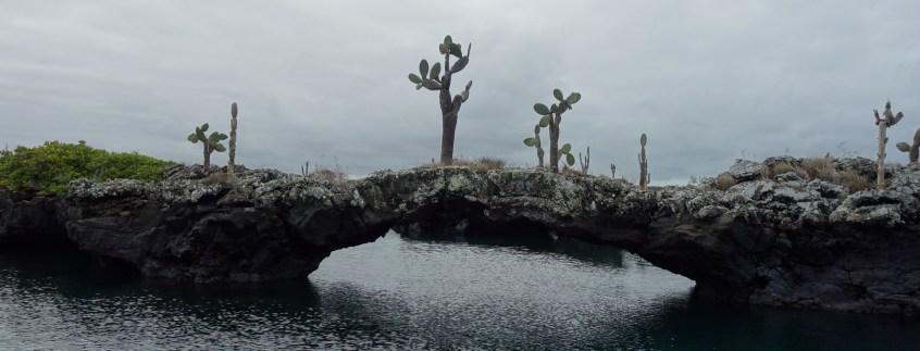 Galápagos, Santa Isabela, Los Tuneles: Die bizarre Tunnel-Landschaft ist ein Überbleibsel einer längst vergangenen Zeit