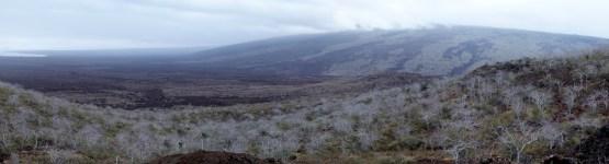 Galápagos, Tagus Cove: Blick auf den Vulkan Darwin und die ausgedehnten Lavafelder des letzten Ausbruchs
