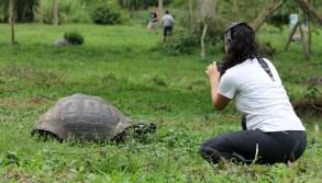 Galápagos, Santa Cruz, Rancho Manzanillo: Die faszinierenden Riesenschildkröten sind seit heute Otti´s neue Lieblingstiere