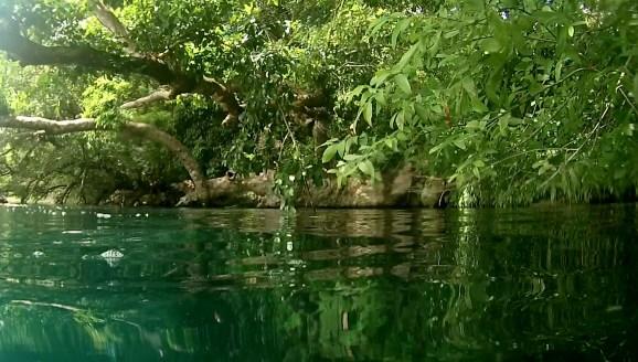 Mexiko, Laguna Bacalar: Schnorcheln in der Cenote, Blick über Wasser