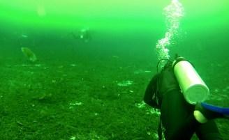 Mexiko, Tulum, Cenoten Tauchen: Unwirkliche Ansichten in der Cenote Car Wash