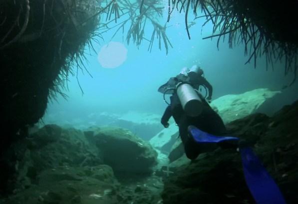 Mexiko, Tulum, Cenoten Tauchen, Casa Cenote: Eine sehr abwechslungsreiche Unterwasserlandschaft