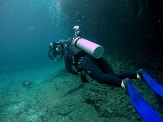 Mexiko, Tulum: Cenoten Tauchen in der Casa Cenote