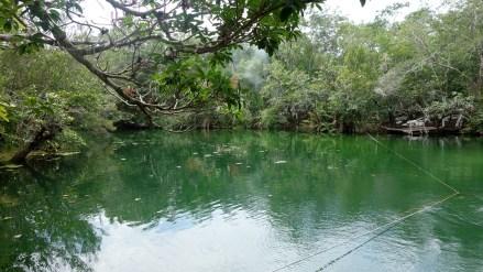 Mexiko, Tulum, Cenoten Tauchen: Die Cenote Car Wash wartet auf uns