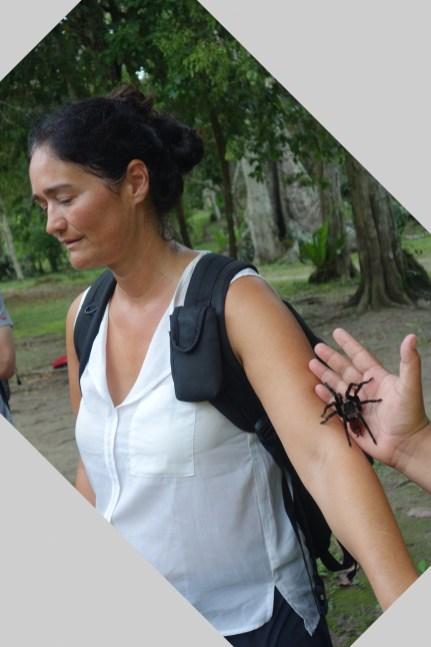 Guatemala, Tikal: Und wieder ein Grenze die Otti hinter sich gelassen hat. Auch wenn es sehr viel Überwindung gekostet hat.