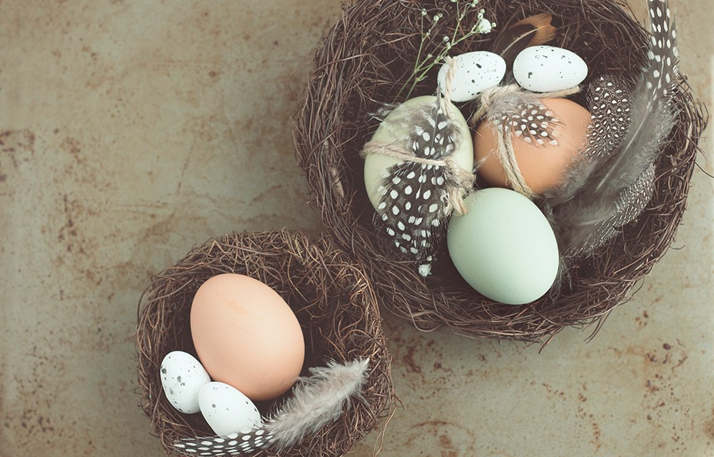 Forget Easter Eggs; Start Building Your Nest Egg!