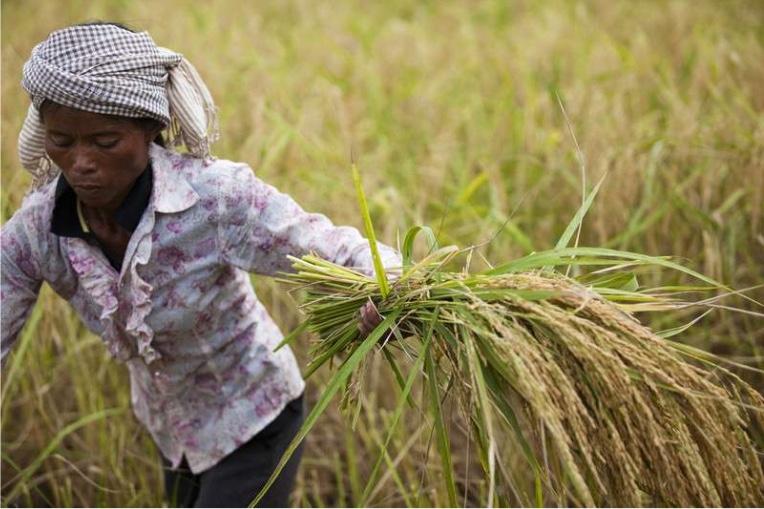 Oxfam investeert in agroecologie