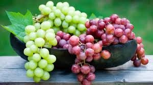 Grapes in Kenya
