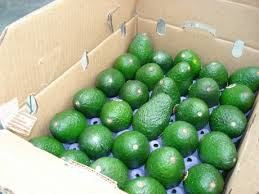 packaged hass avocado