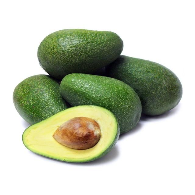 Fuerte Avocado farming