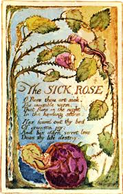 Europe: Oh Rose Thou Art Sick