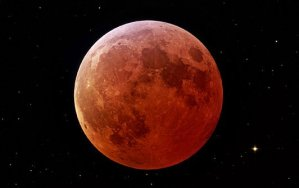 Astrology of Now: The Eclipse, the Pope and the Hajj