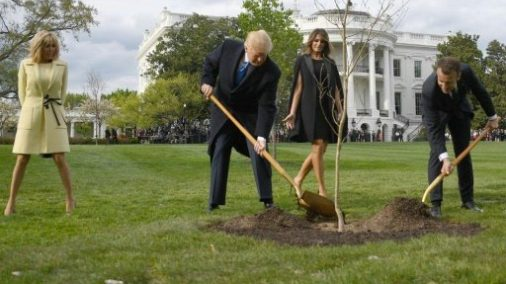 Brigitte Macron, Donald Trump, Melania Trump, Emmanuel Macron — planting a tree on the White House lawn. 1000 words and all that.