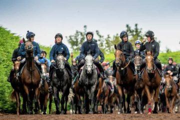 pat smullen charity horse race
