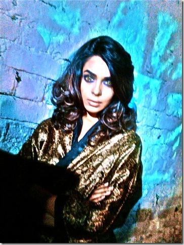 Mallika Sherawat on Hisss Set Photo 12