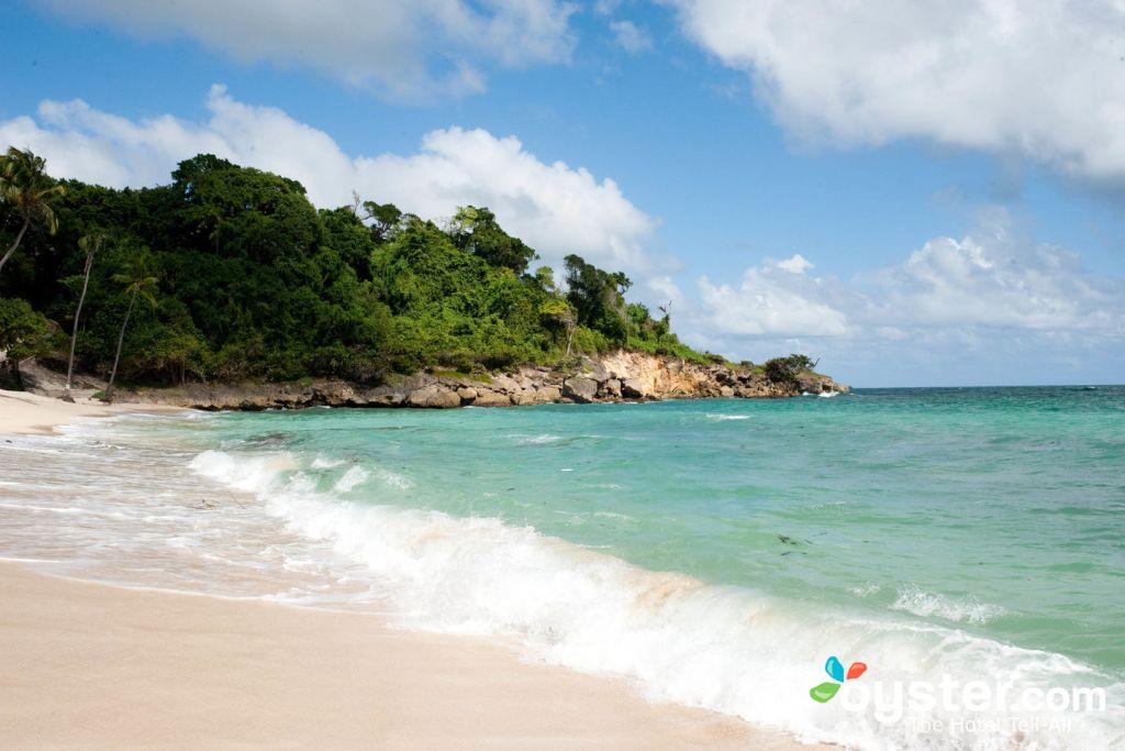 Beach at the Luxury Bahia Principe Cayo Levantado, Samana/Oyster