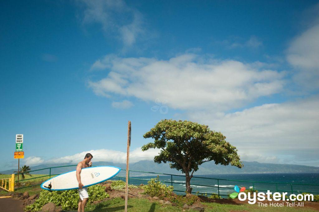 Along the Road to Hana, Maui/Oyster