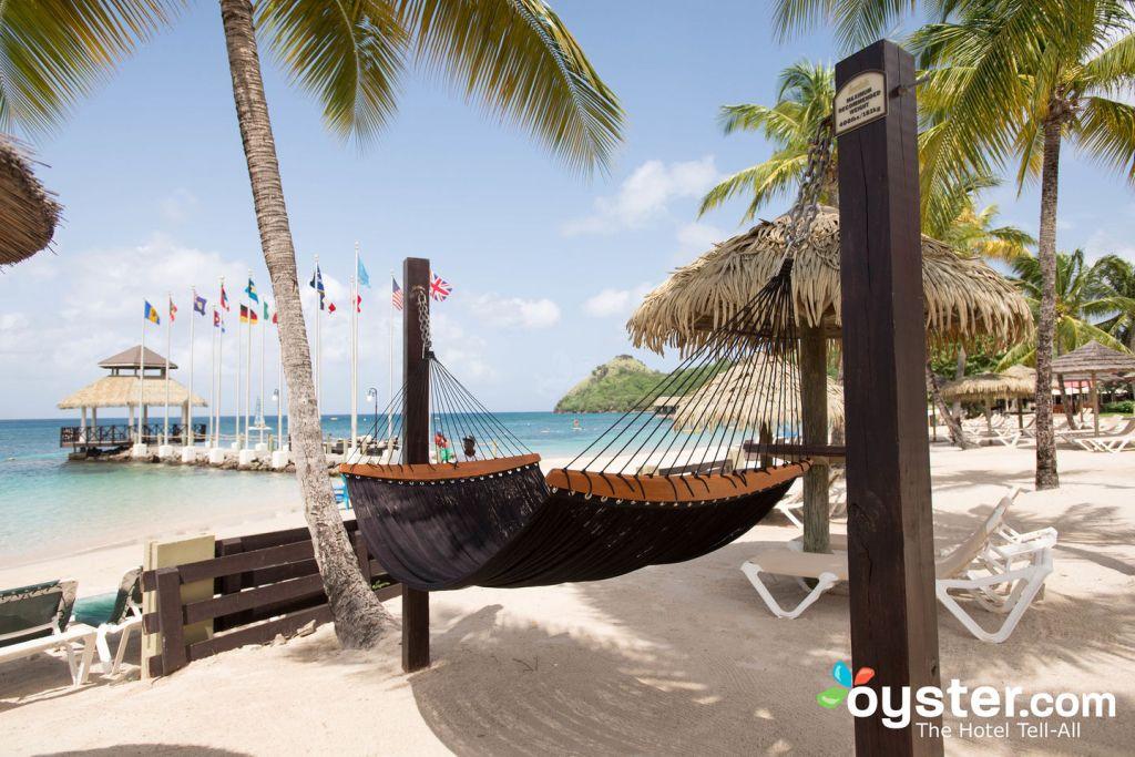 Beach at Sandals Grande St. Lucian Spa & Beach Resort/Oyster