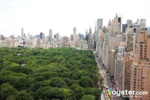 Central Park, Upper West Side/Oyster