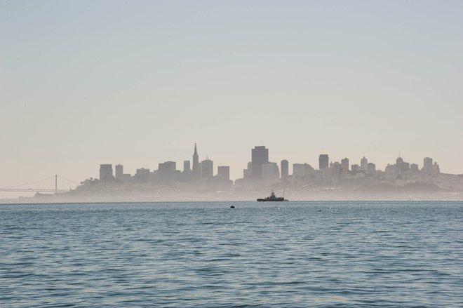 San Francisco / Oyster