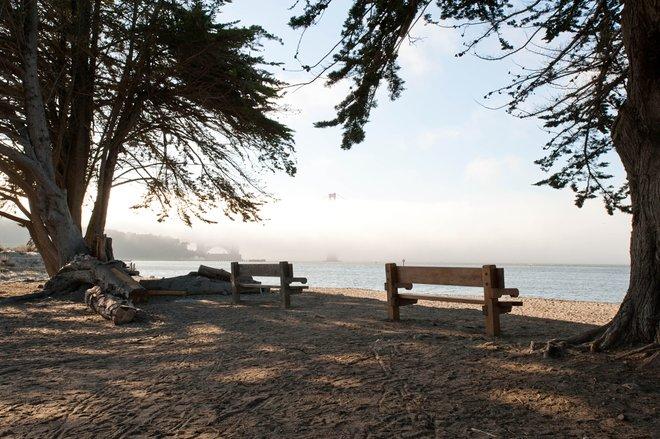 Chrissy Field, San Francisco / Oyster